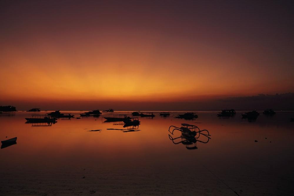 boat lot near ocean shoreline