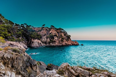 green trees covered island spain zoom background