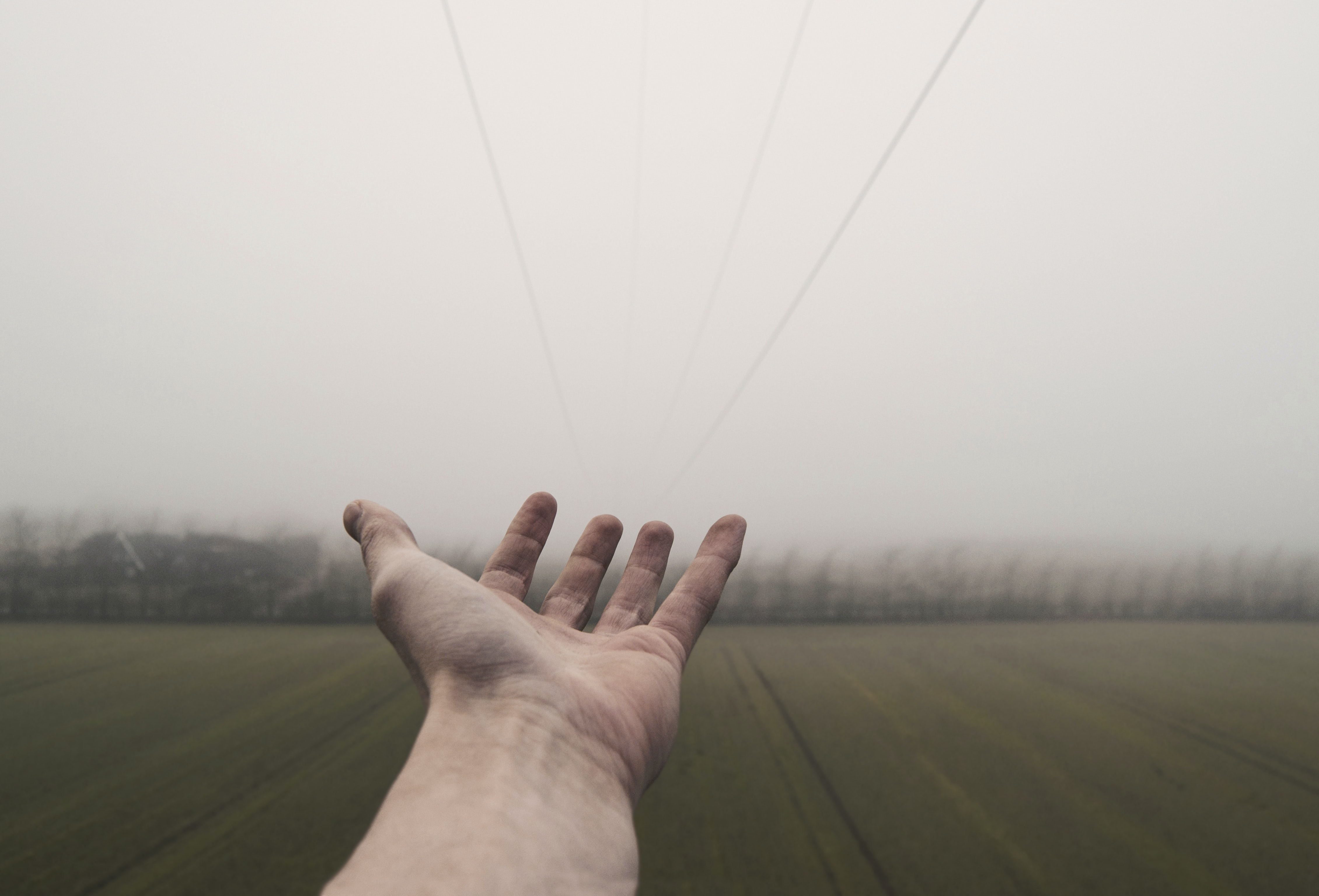A hand reaching out into a field.