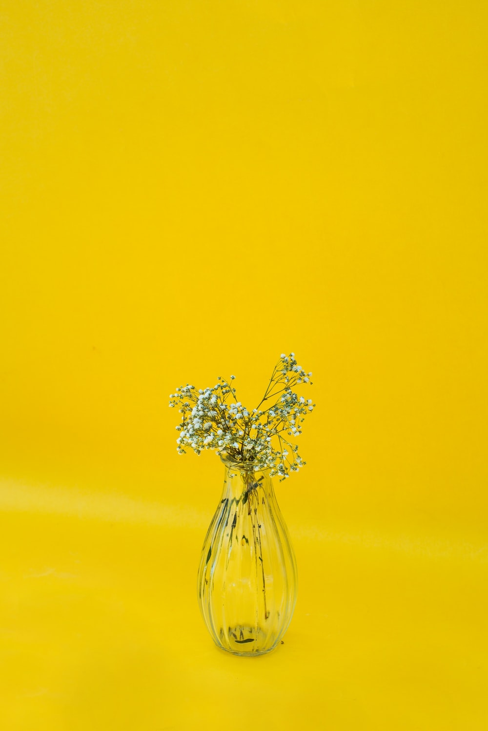 Flowers In A Glass Vase With Yellow Background