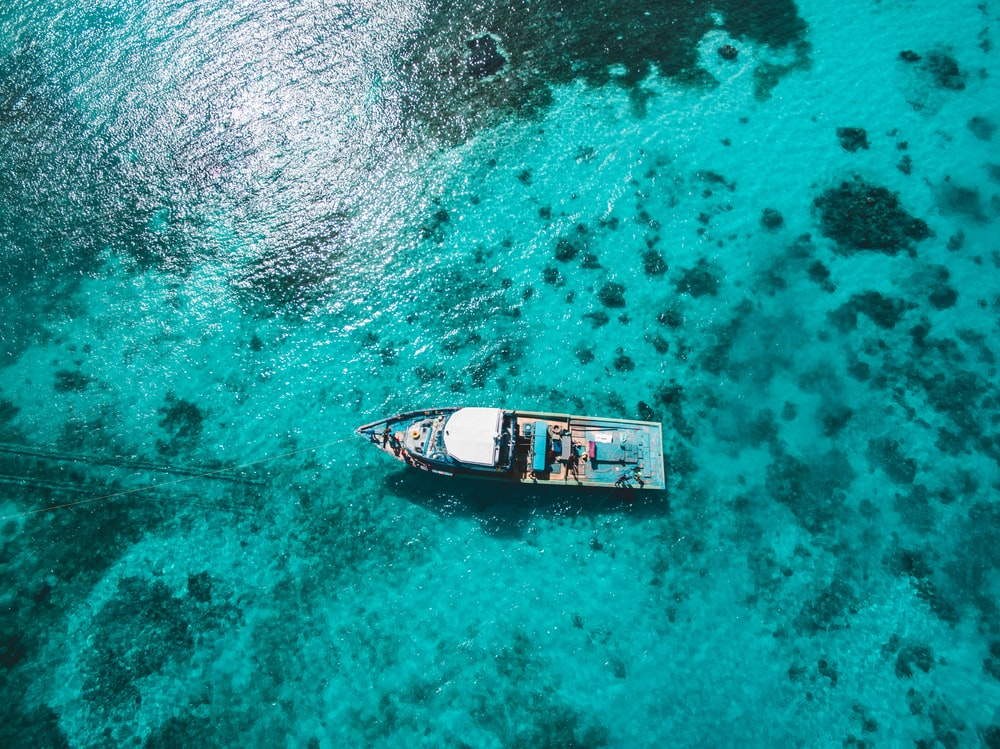 aerial photography on white and blue boat on sea