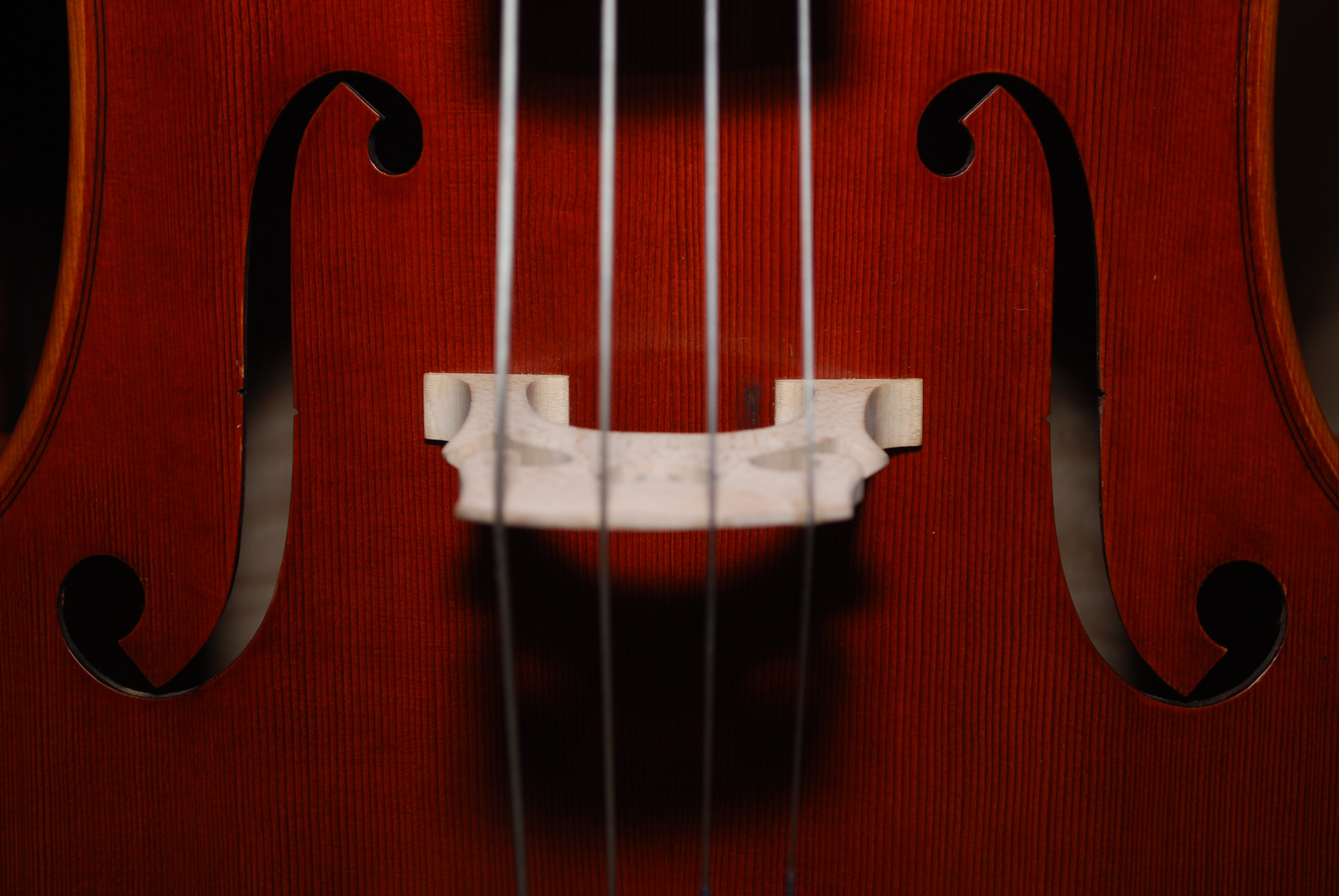 closeup photo of brown stringed instrument