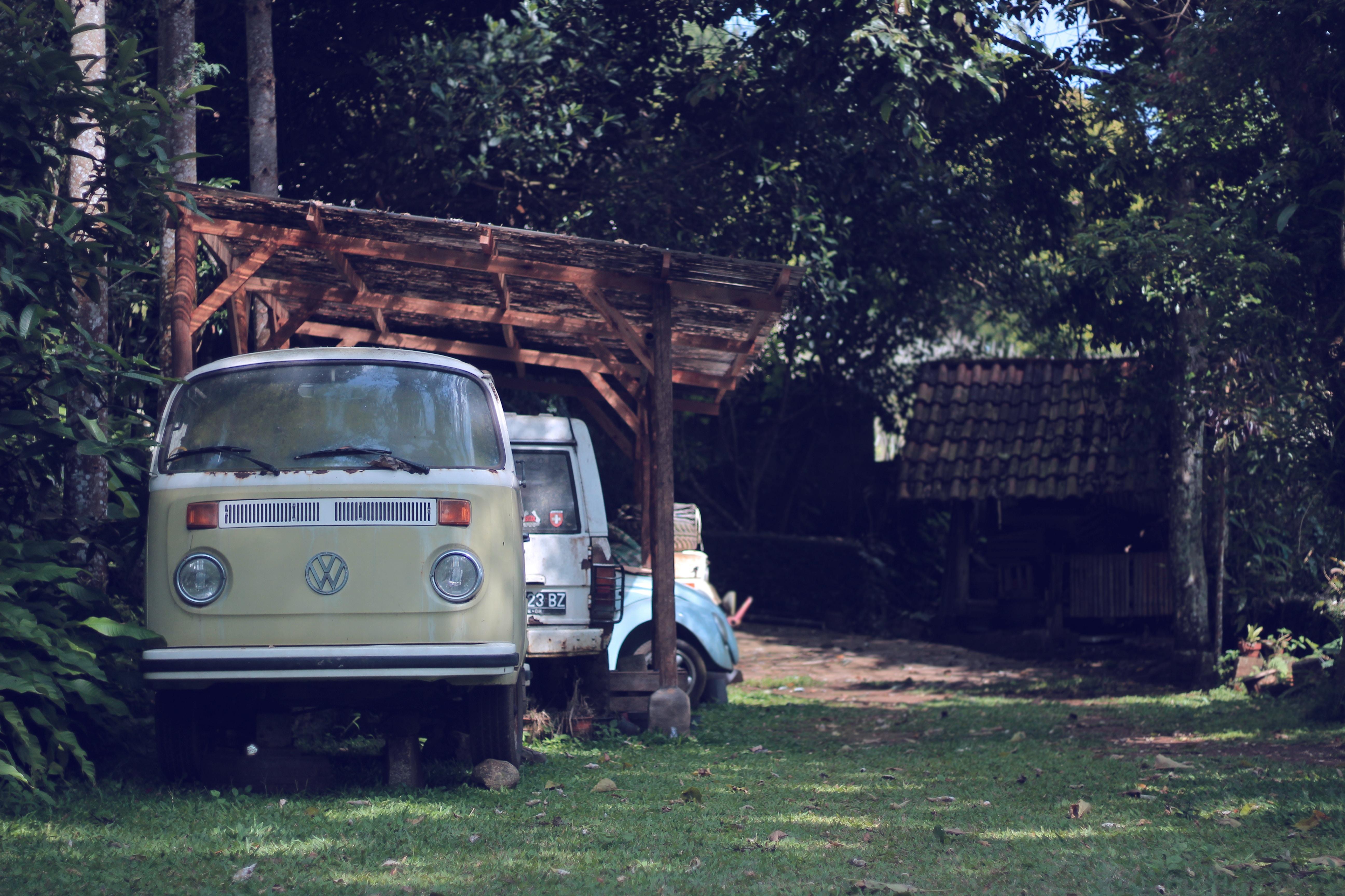 beige Volkswagen T2 van parked beside the tree