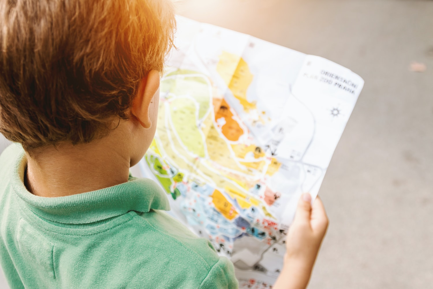 Little boy looking at a map.