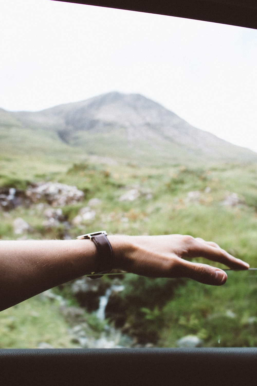 selective focus photography of left human hand background with forest