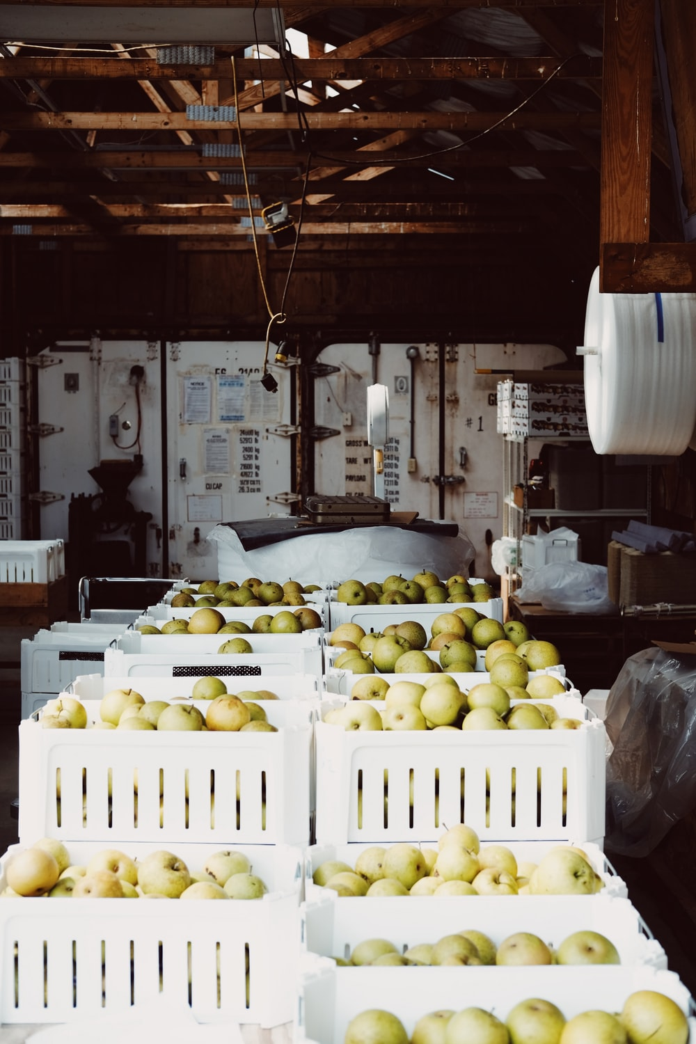 crate of apple lot