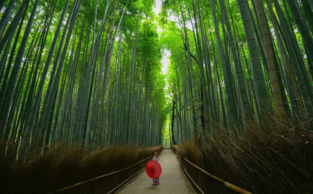 Minimalist Travel: A Weekend in Japan