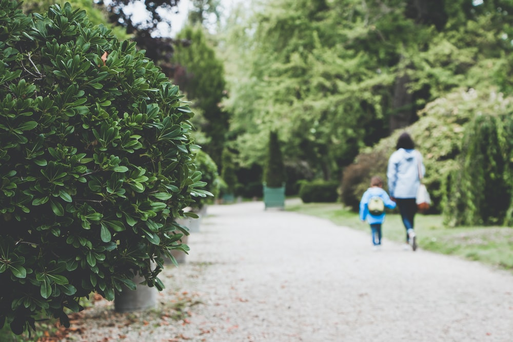 woman holding toddler while walking along concrete pathway surrounded by trees
