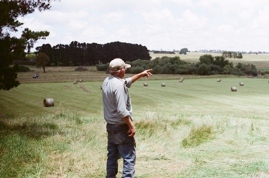 """""""Taken on an organic cattle property in Bowral, NSW, Australia.  \r\nCol was the farm manager, my partner at the time was building a series of dry-stone walls."""""""