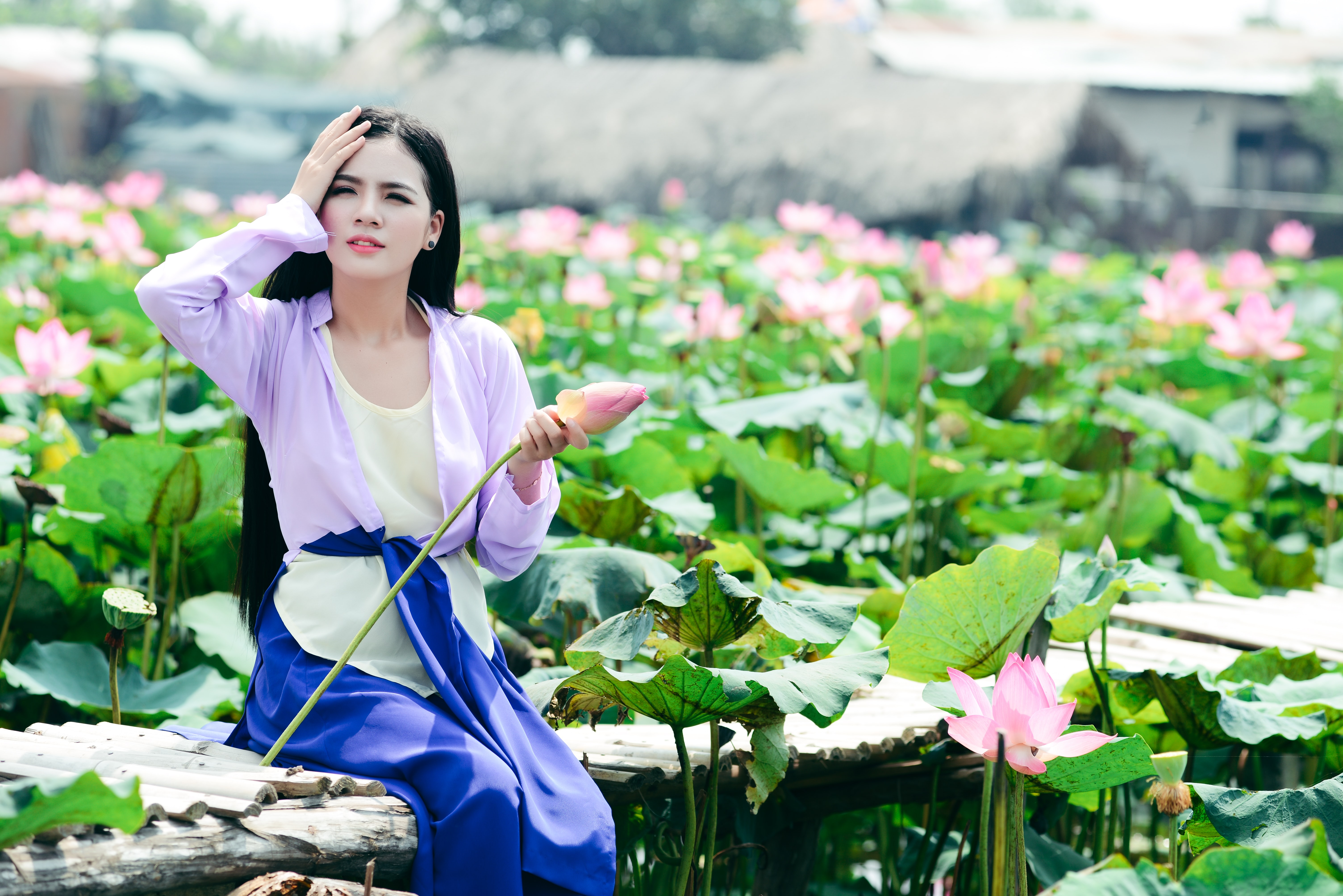 tilt shift photography of woman sitting behind pink flower plants