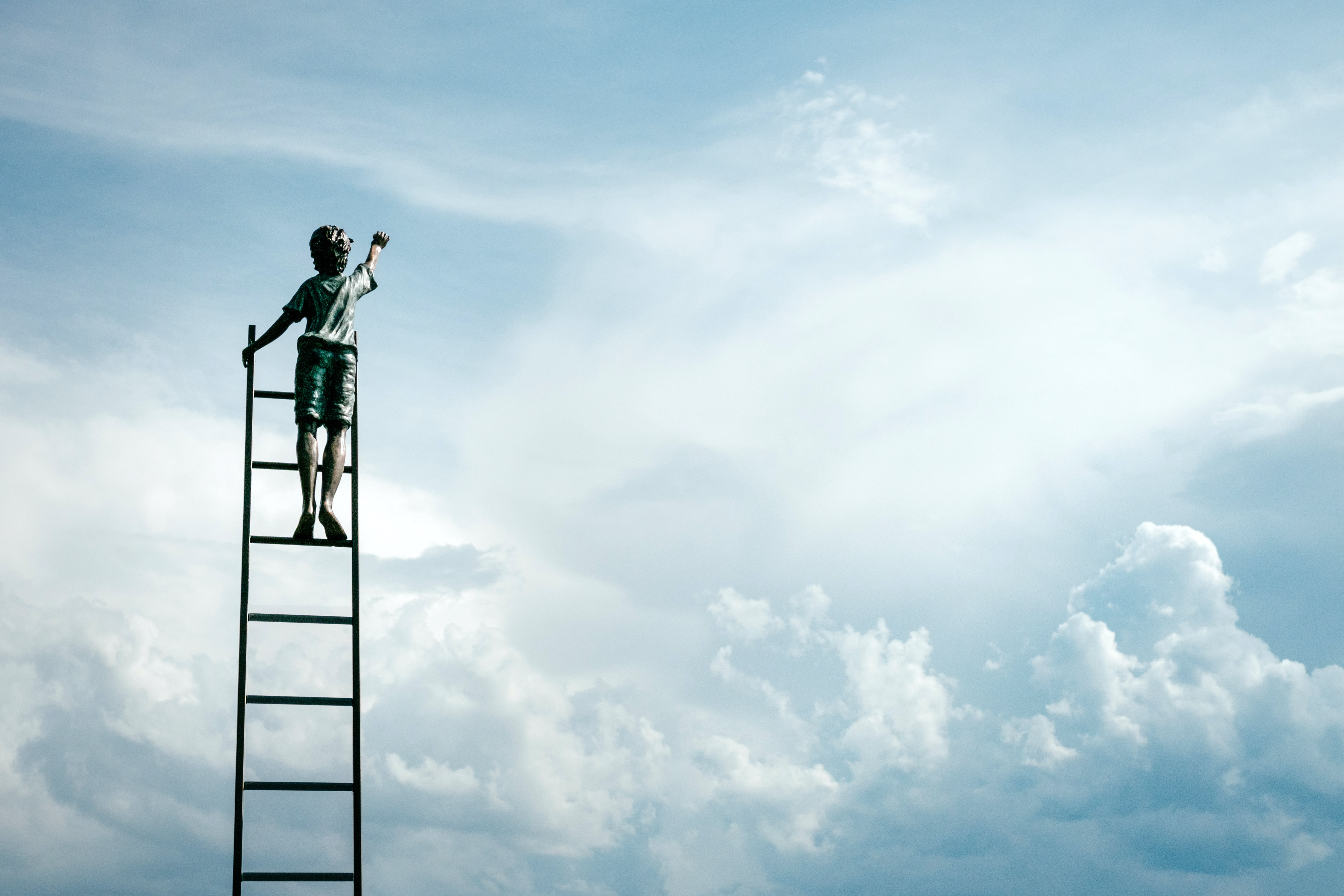 A person standing on top of a ladder in the clouds.