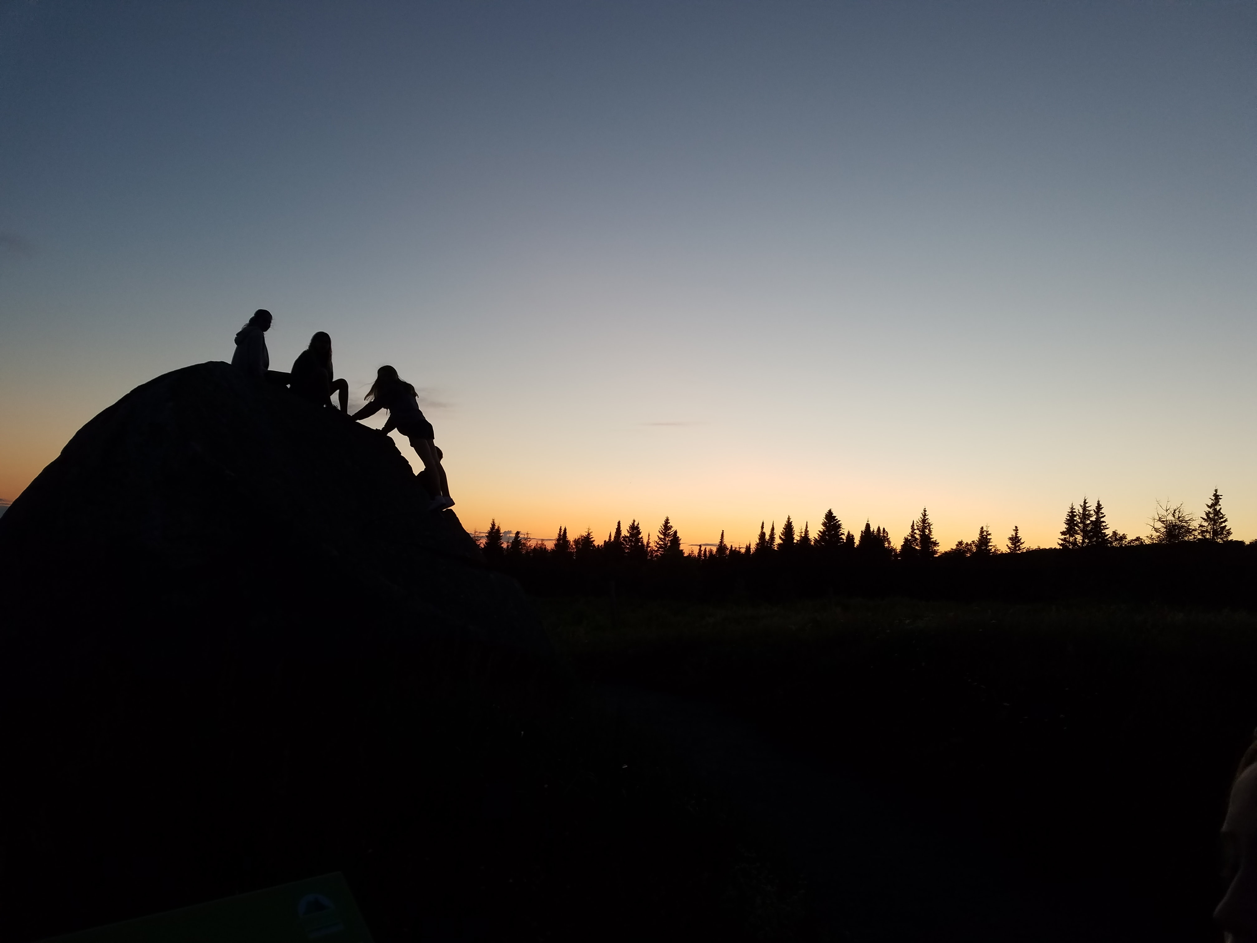 silhouette of three people on hill near trees during sunset