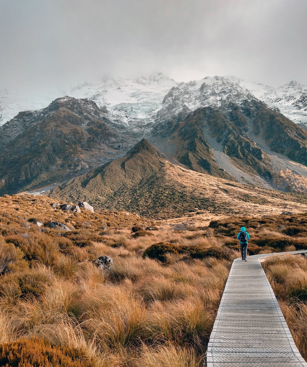 person walking on wooden pathway near mountain