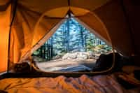 Everything's orange camping stories