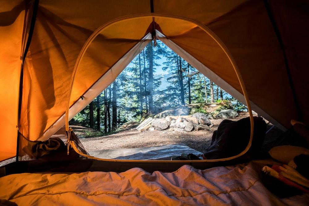 orange camping tent near green trees