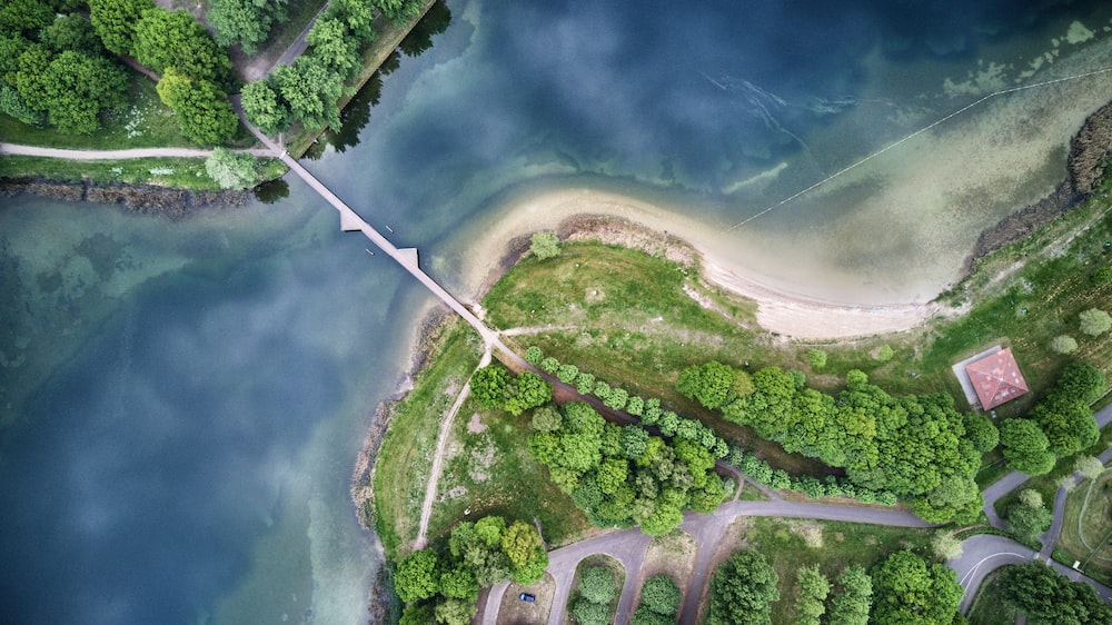 aerial photography of body of water with bridge and trees