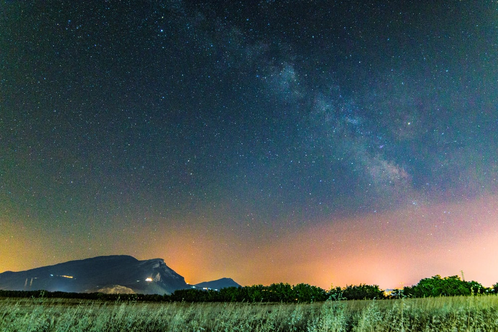 grass field under starry sky