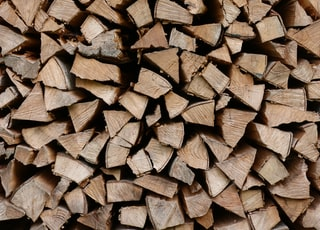 closeup photo of firewoods