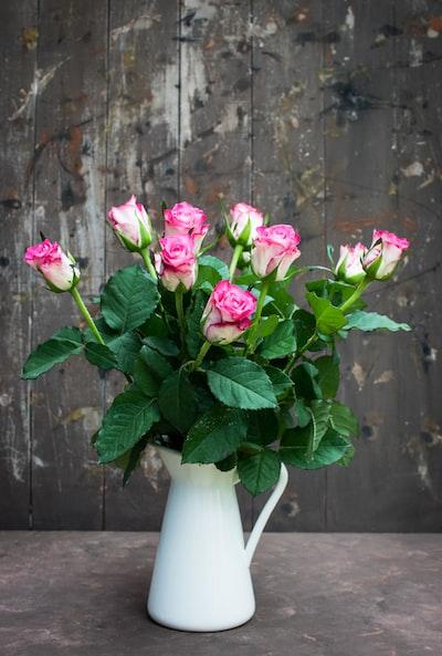 pink rose flowers in white vase