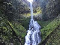 waterfalls raging through moss