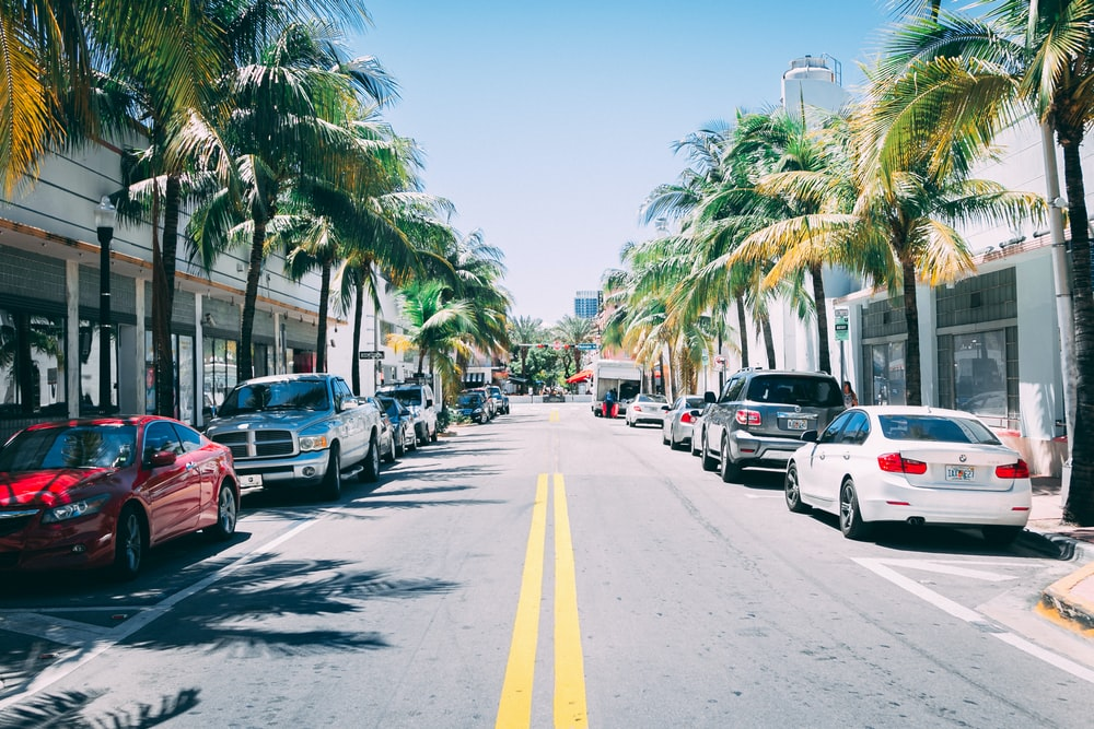 tampa florida things to do