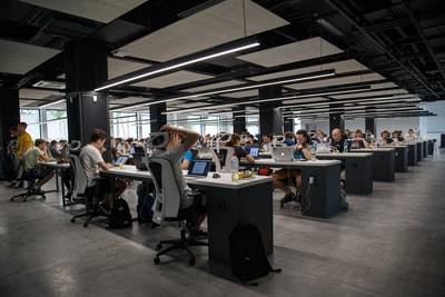 people doing office works