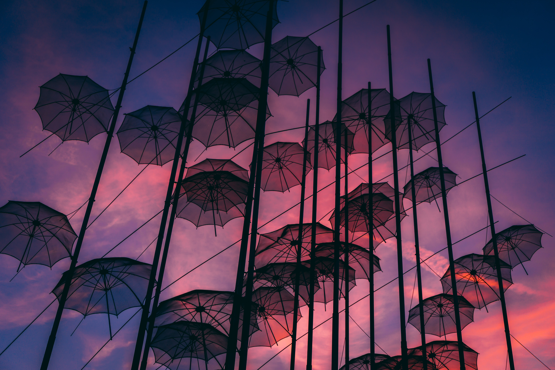 black hanging umbrellas art