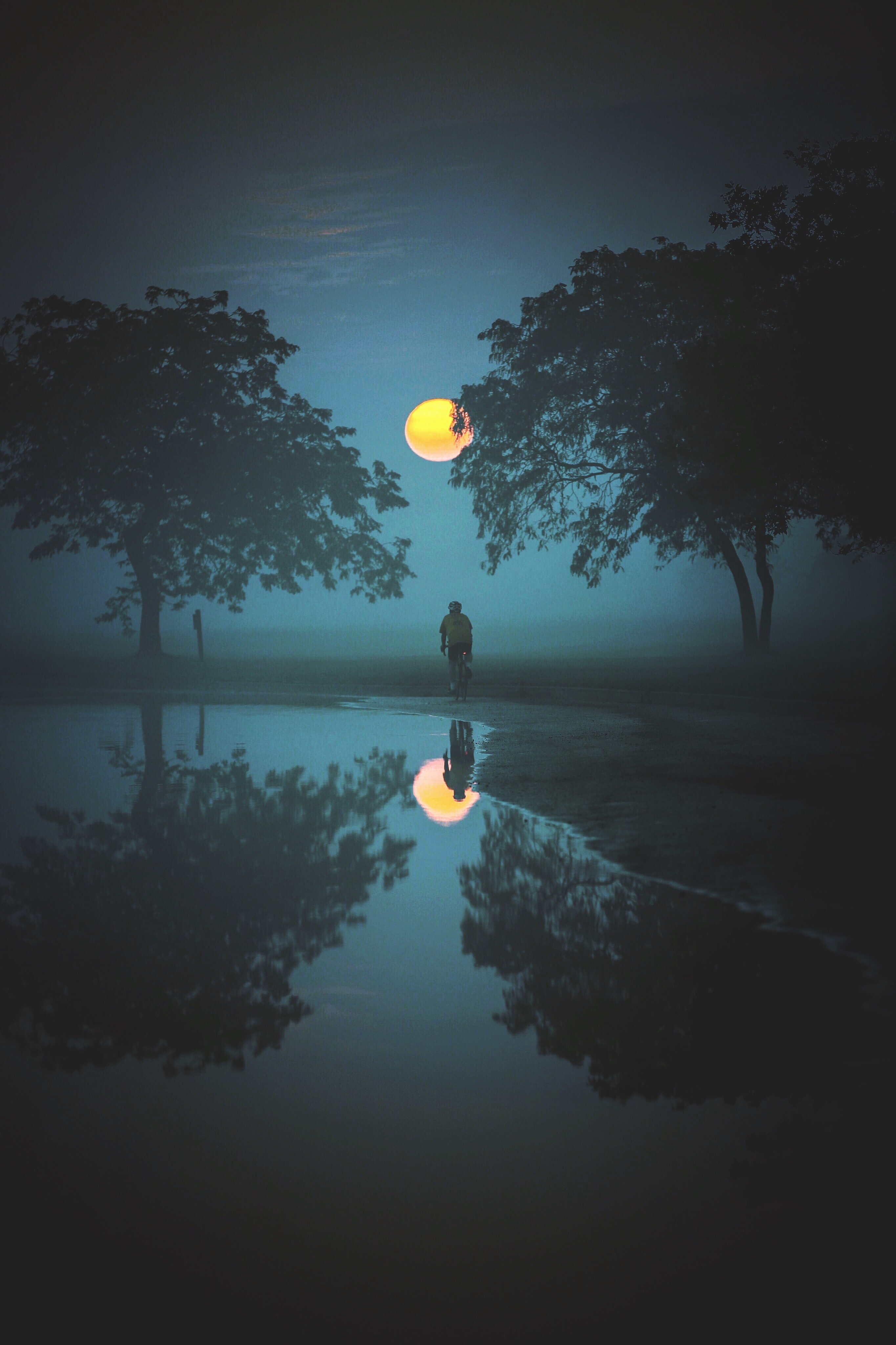 A water reflection picture capturing two bushy trees and a person standing under the moon.