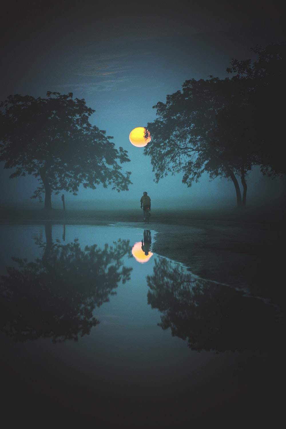 person standing and looking at moon