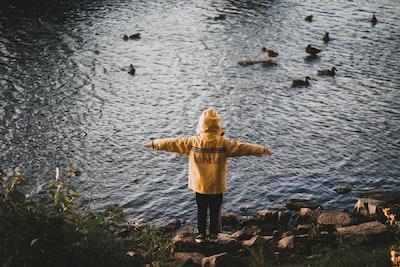 Yellow rain jacket ducks