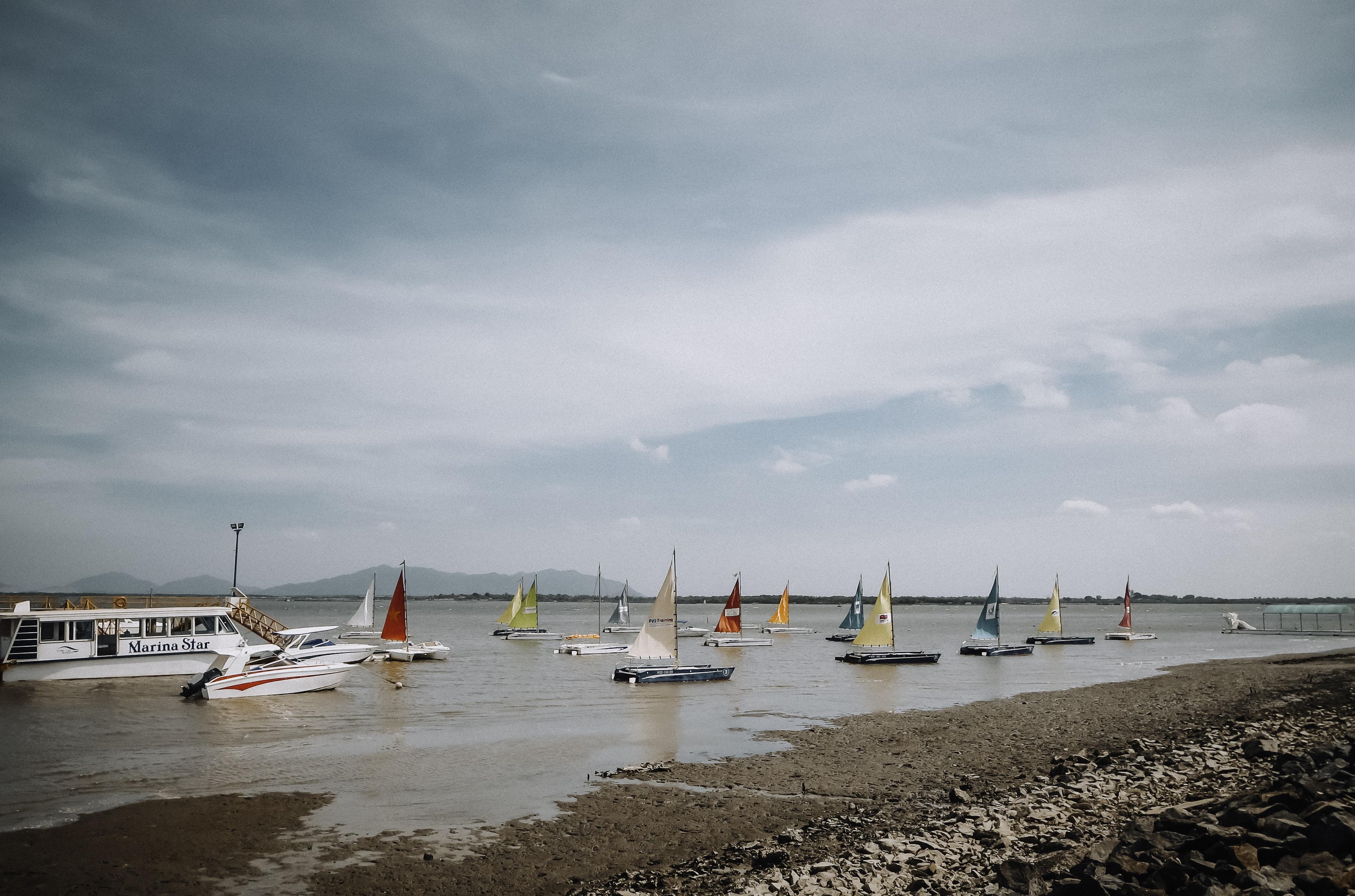 bunch of sailing boats