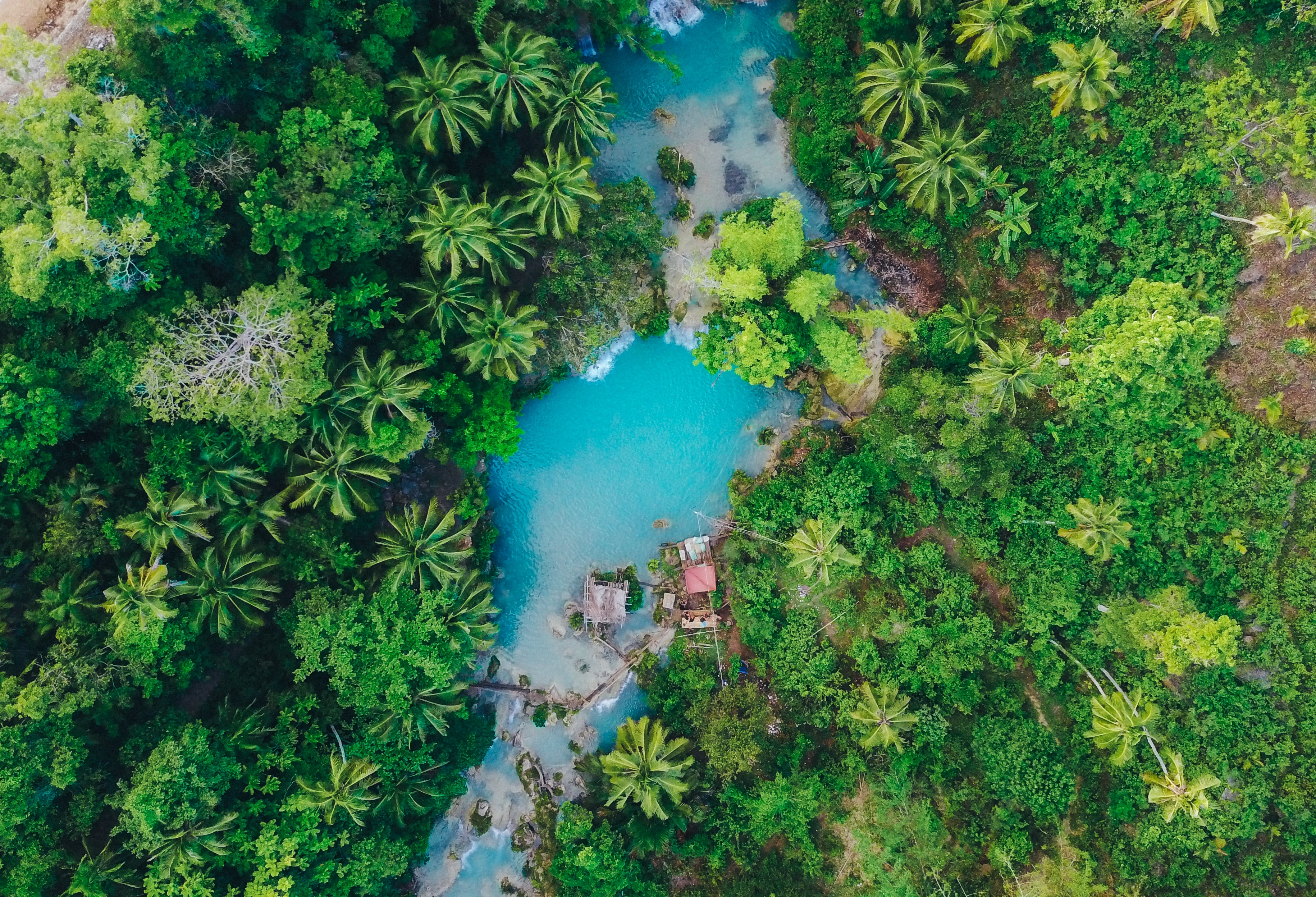 Drone view of a tropical forest resort area.