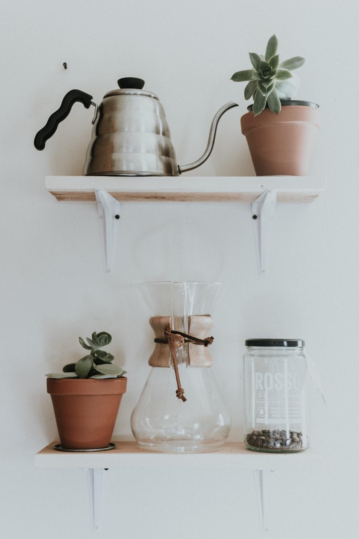 succulent plants beside glass pitcher
