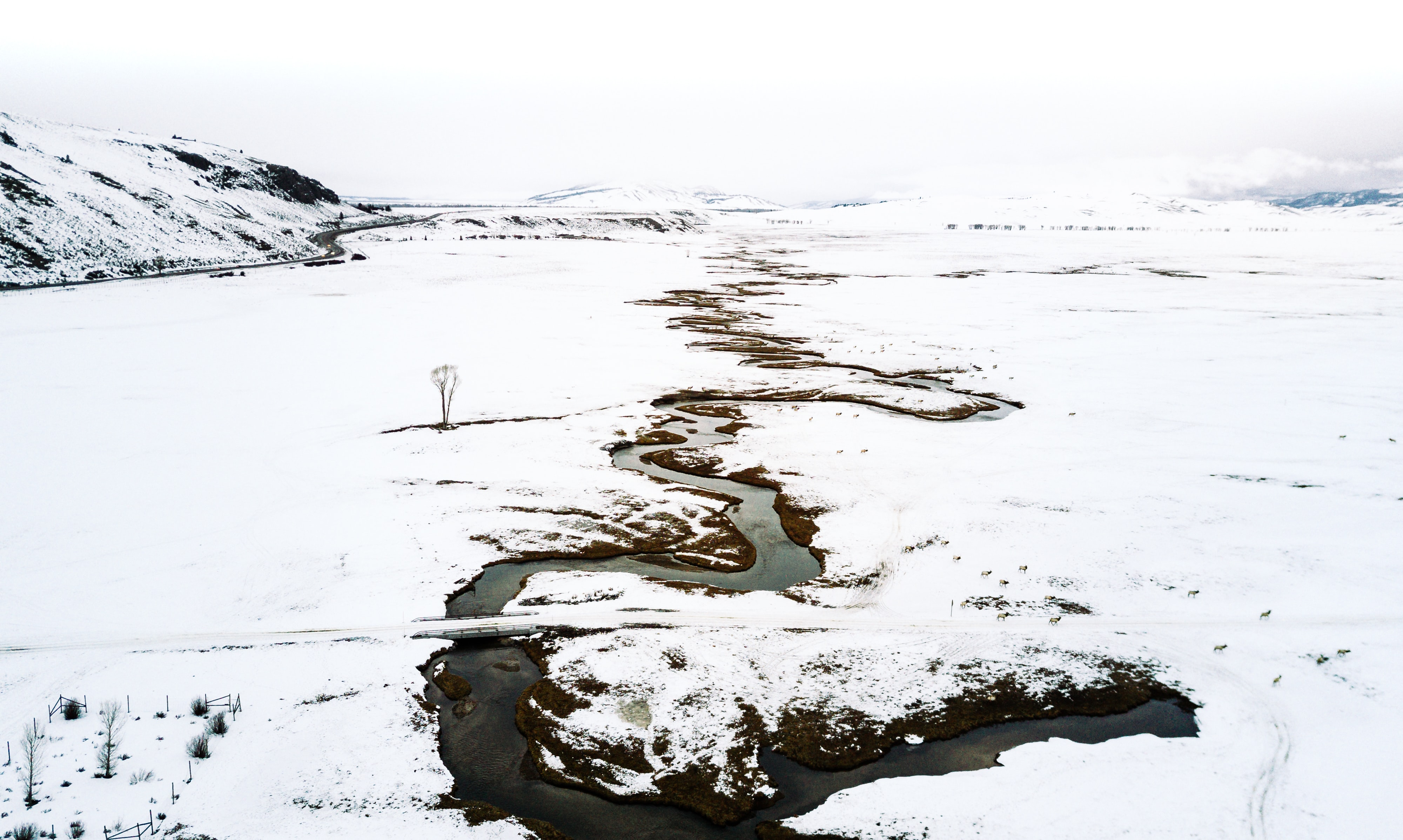 landscape photography of snow covered land