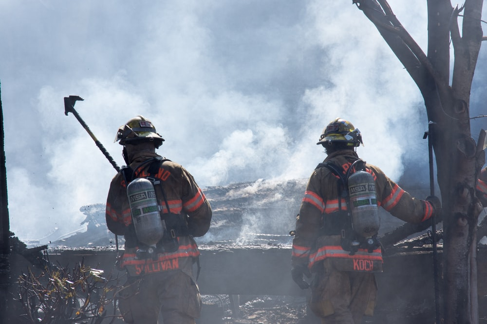 two firefighters walking on burned trees covered with smoke