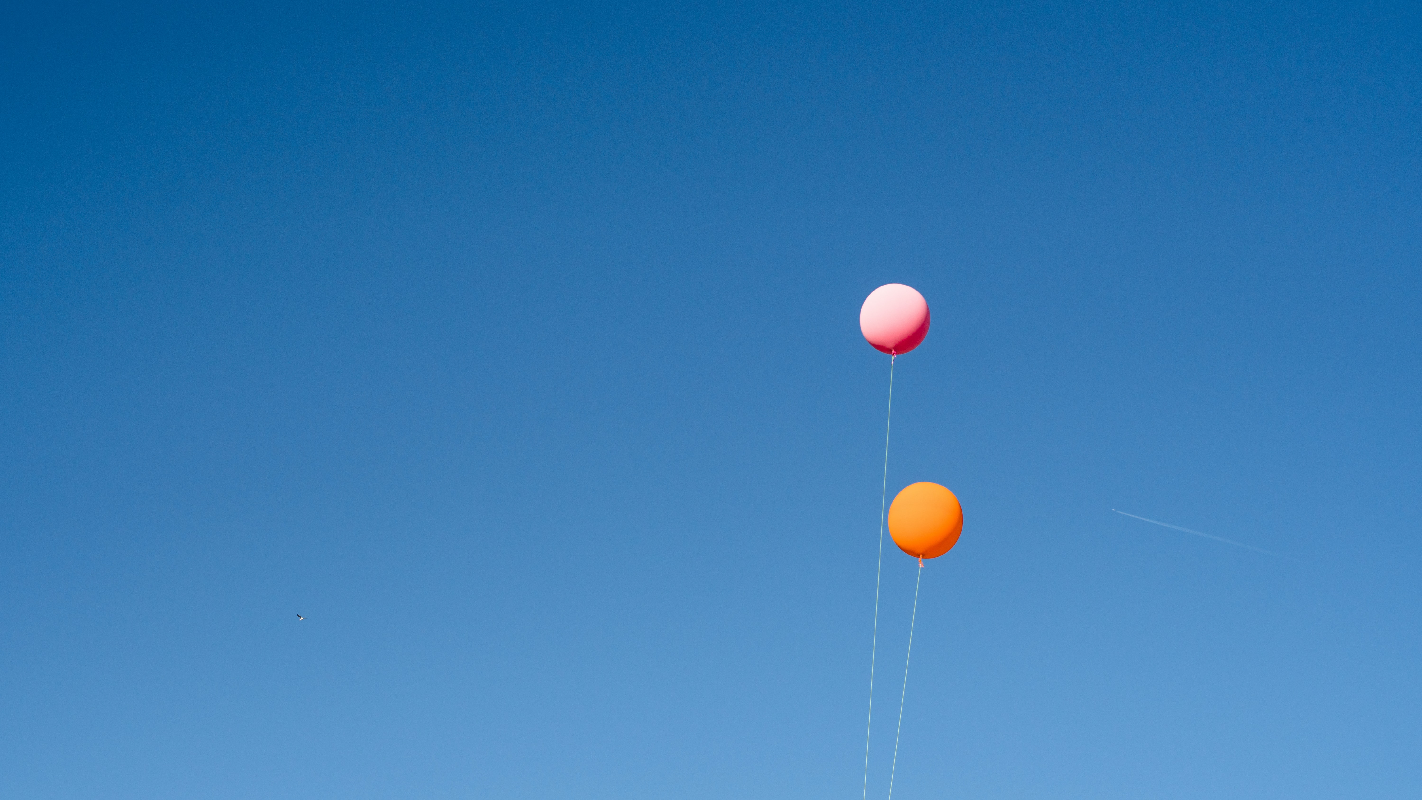 two orange and pink balloons