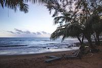 grey lounge chairs on beachside