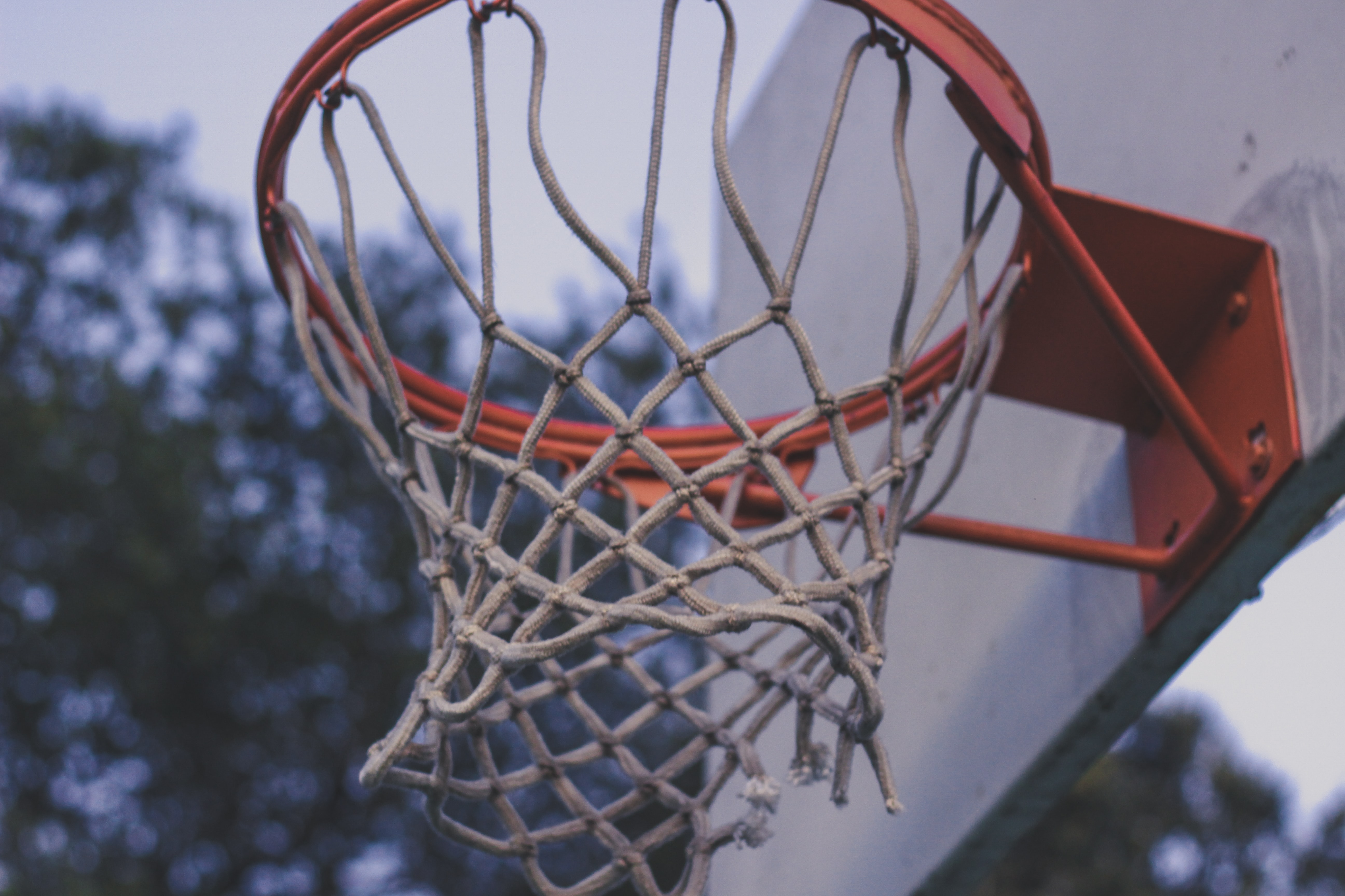 closeup photo of basketball ring