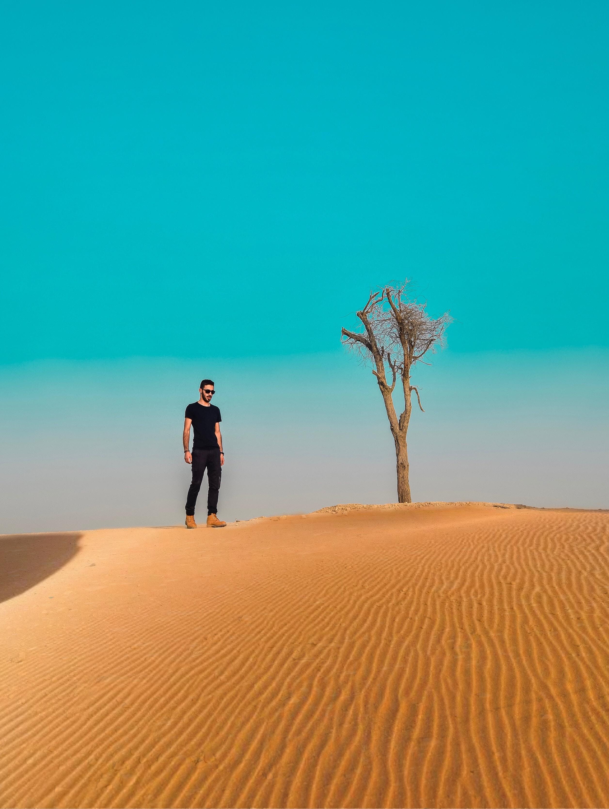 man standing on sand field near dried tree