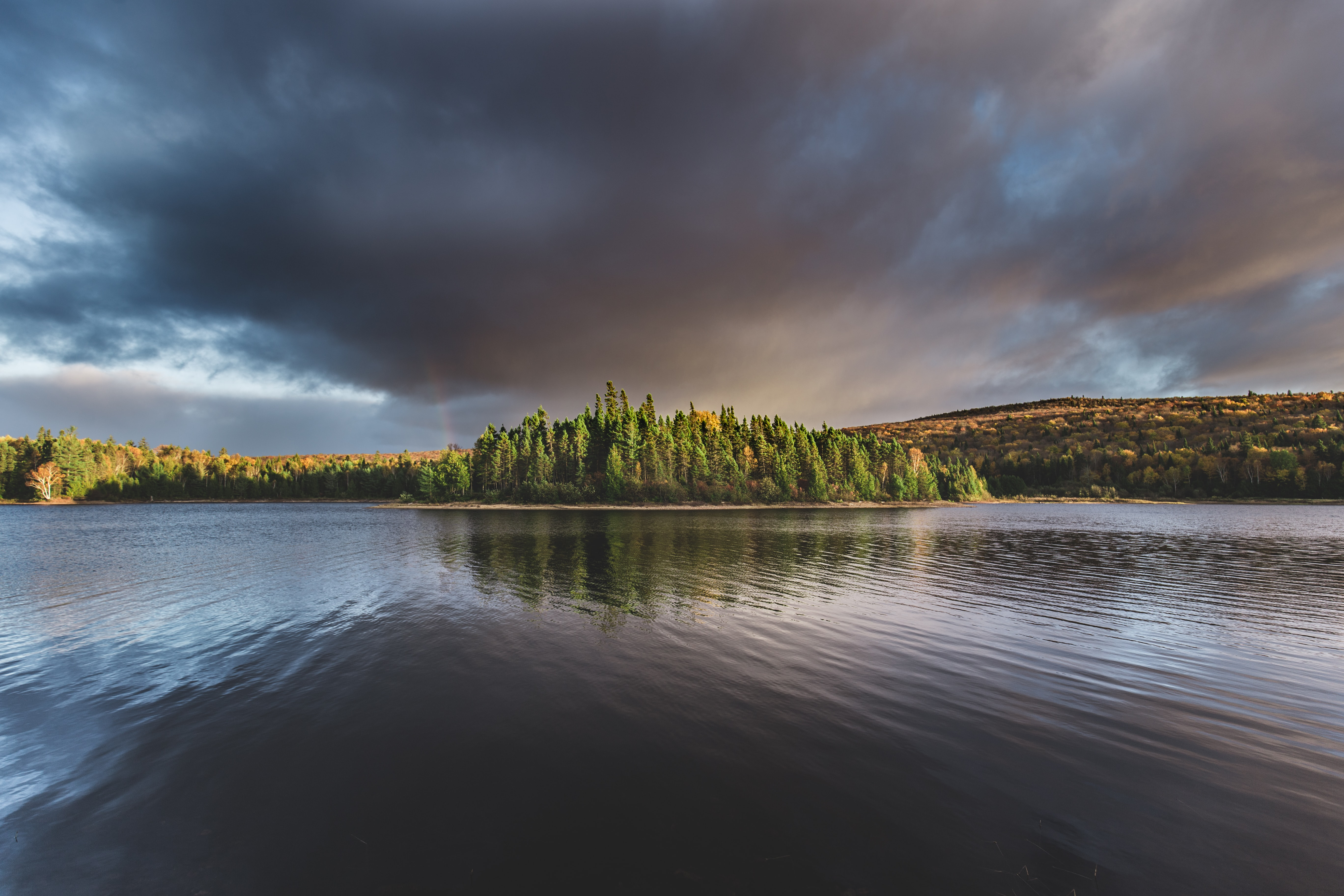 green forest island near calm body of water nature photography