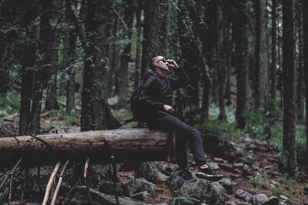 person wearing black jacket on log wod inside the forest