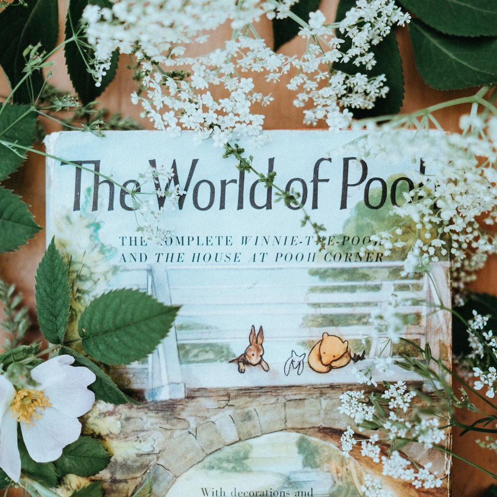 The World of Pooh book