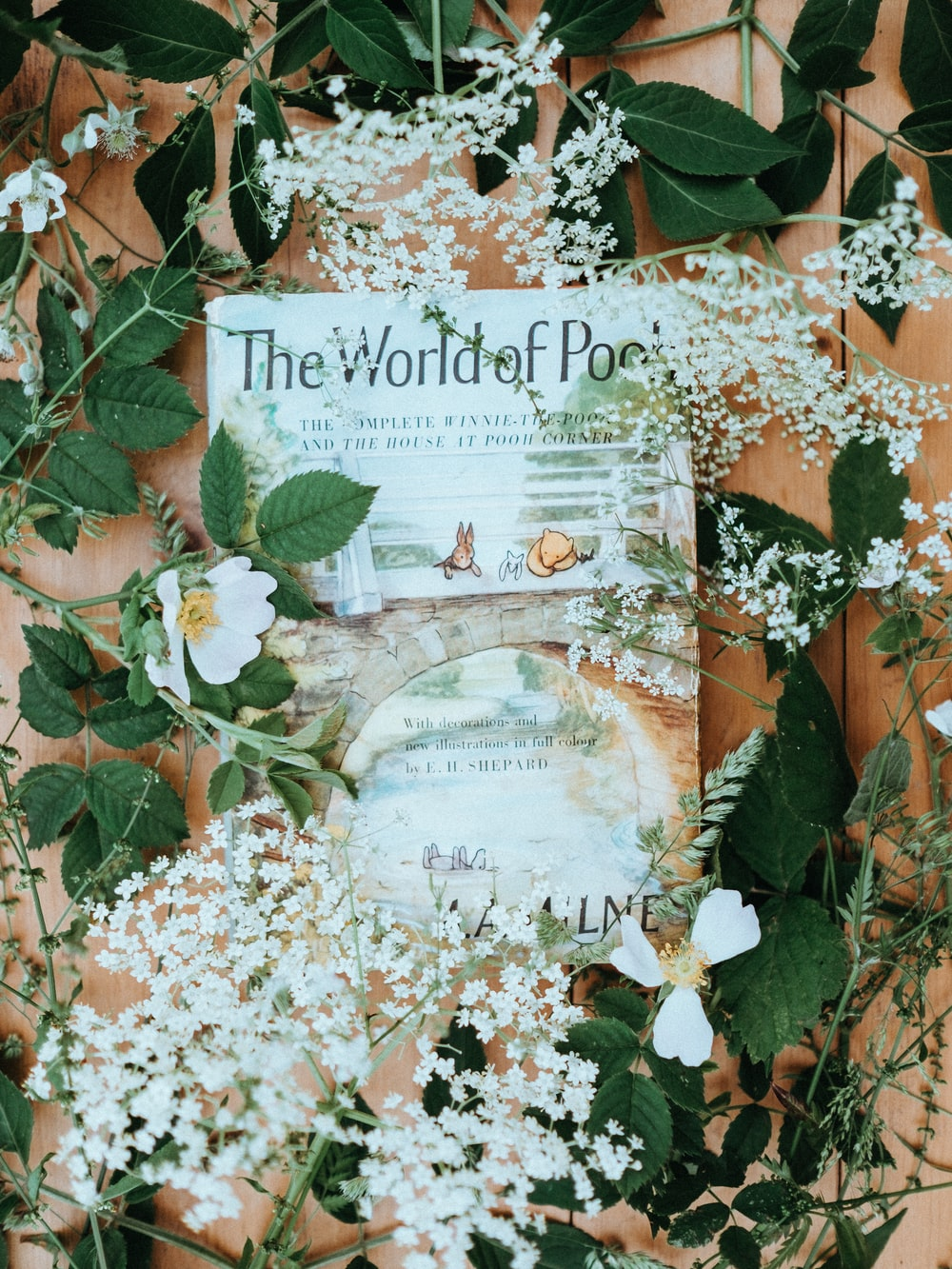 white petaled flower lot on book