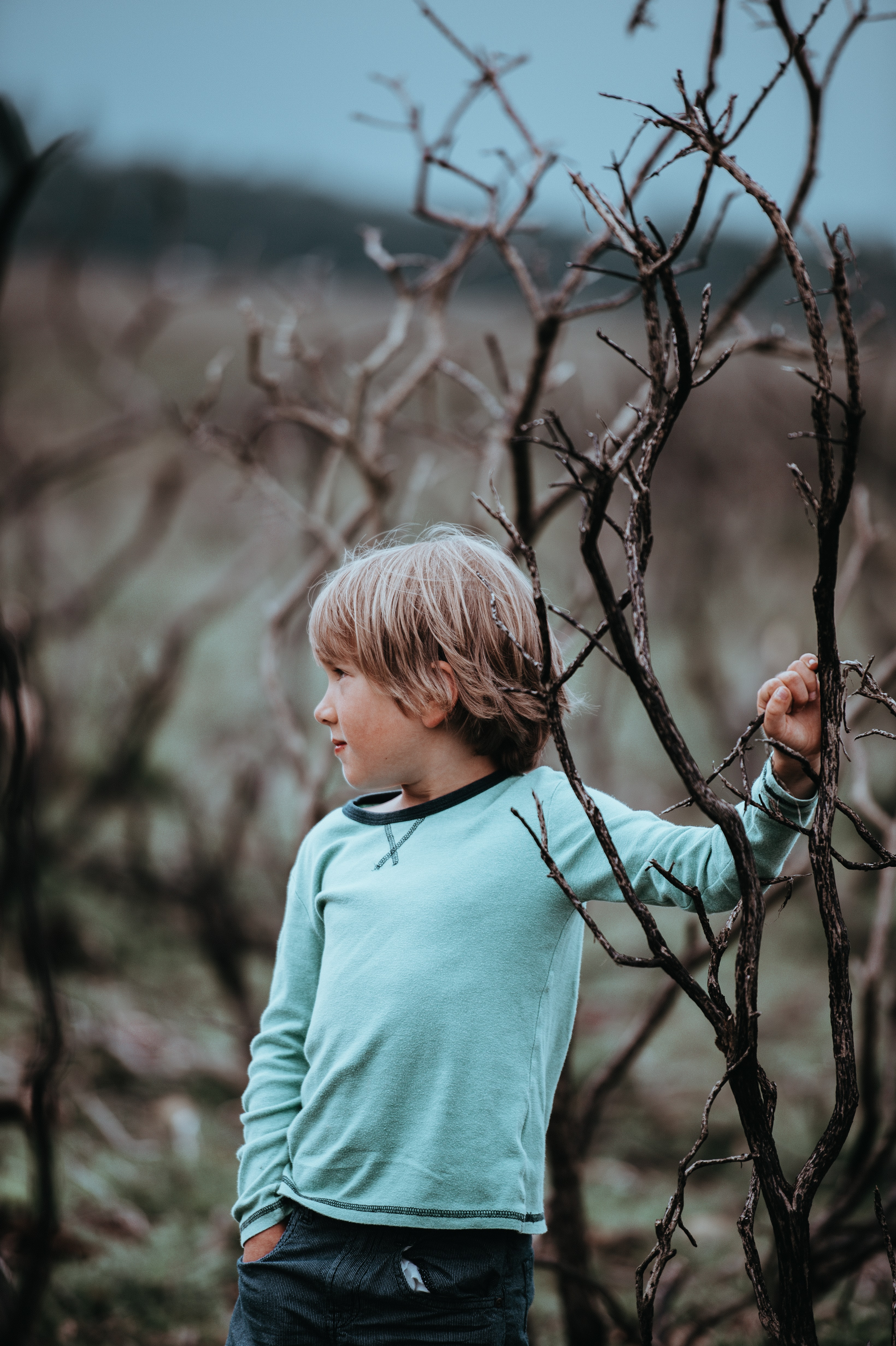 shallow focus photography of boy near brown tree