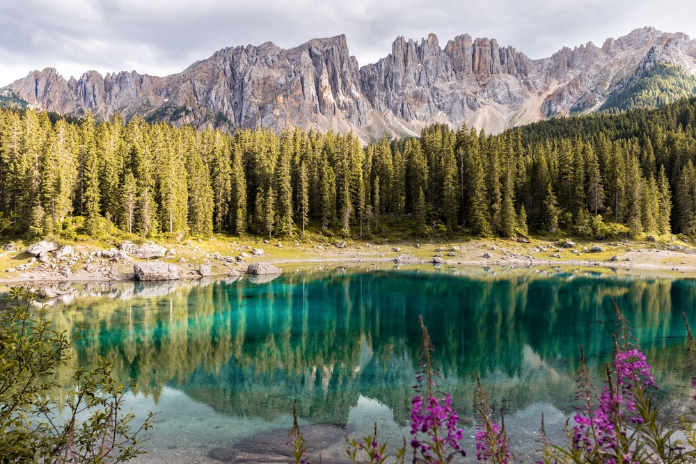 mirror photography of mountain and trees near body of water