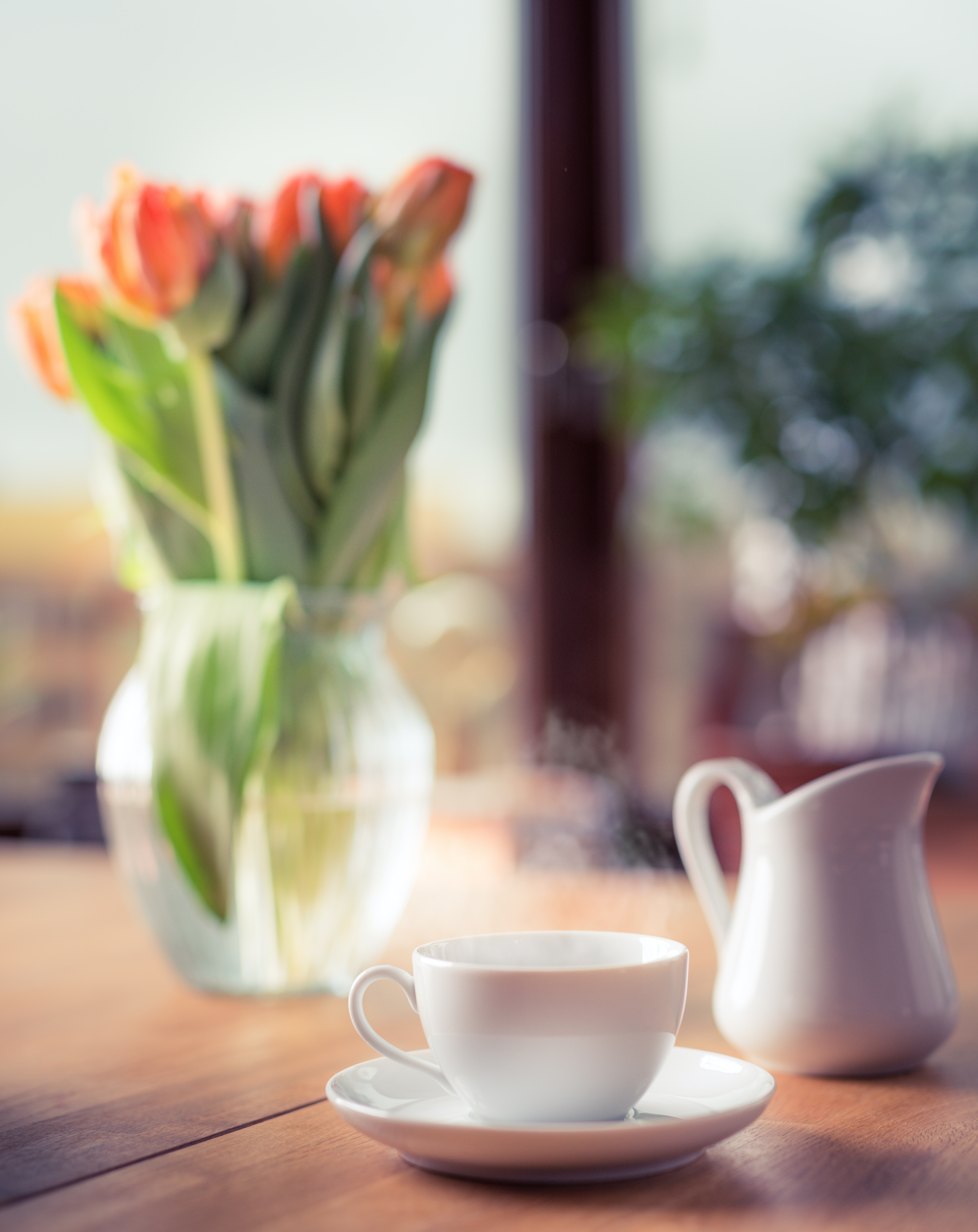 shallow depth of field photo of white teacup on saucer