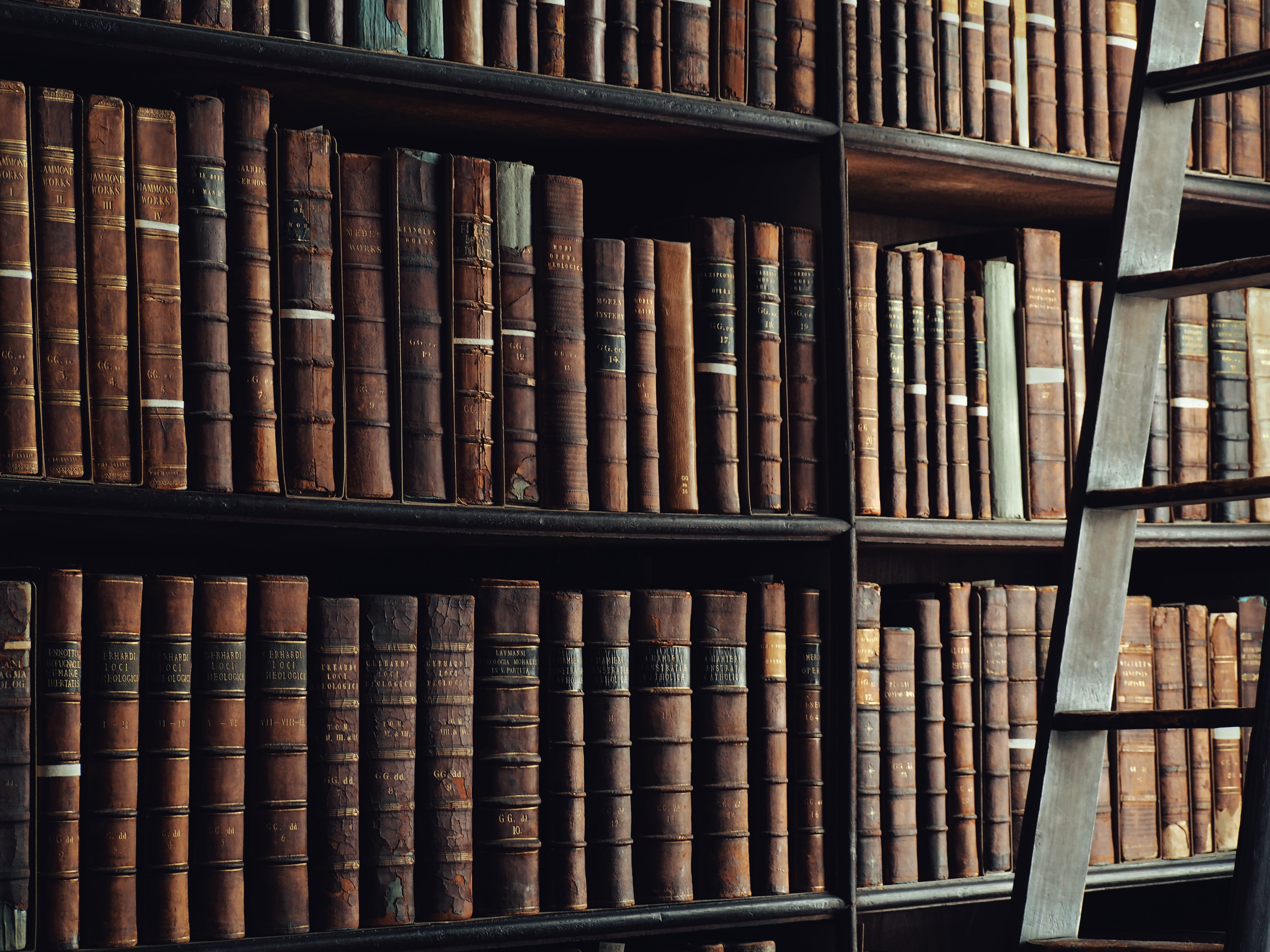brown book lot on bookshelves inside the library