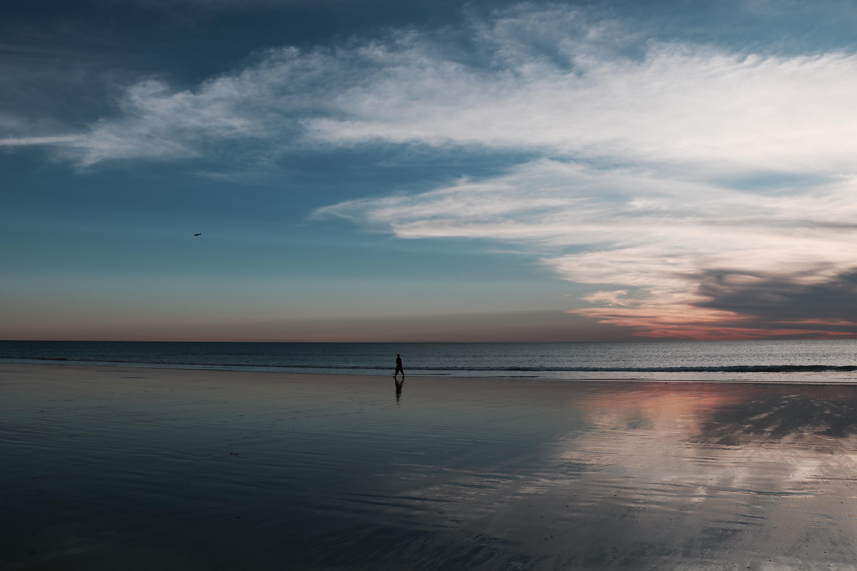 person walking on beach shore under blue sky