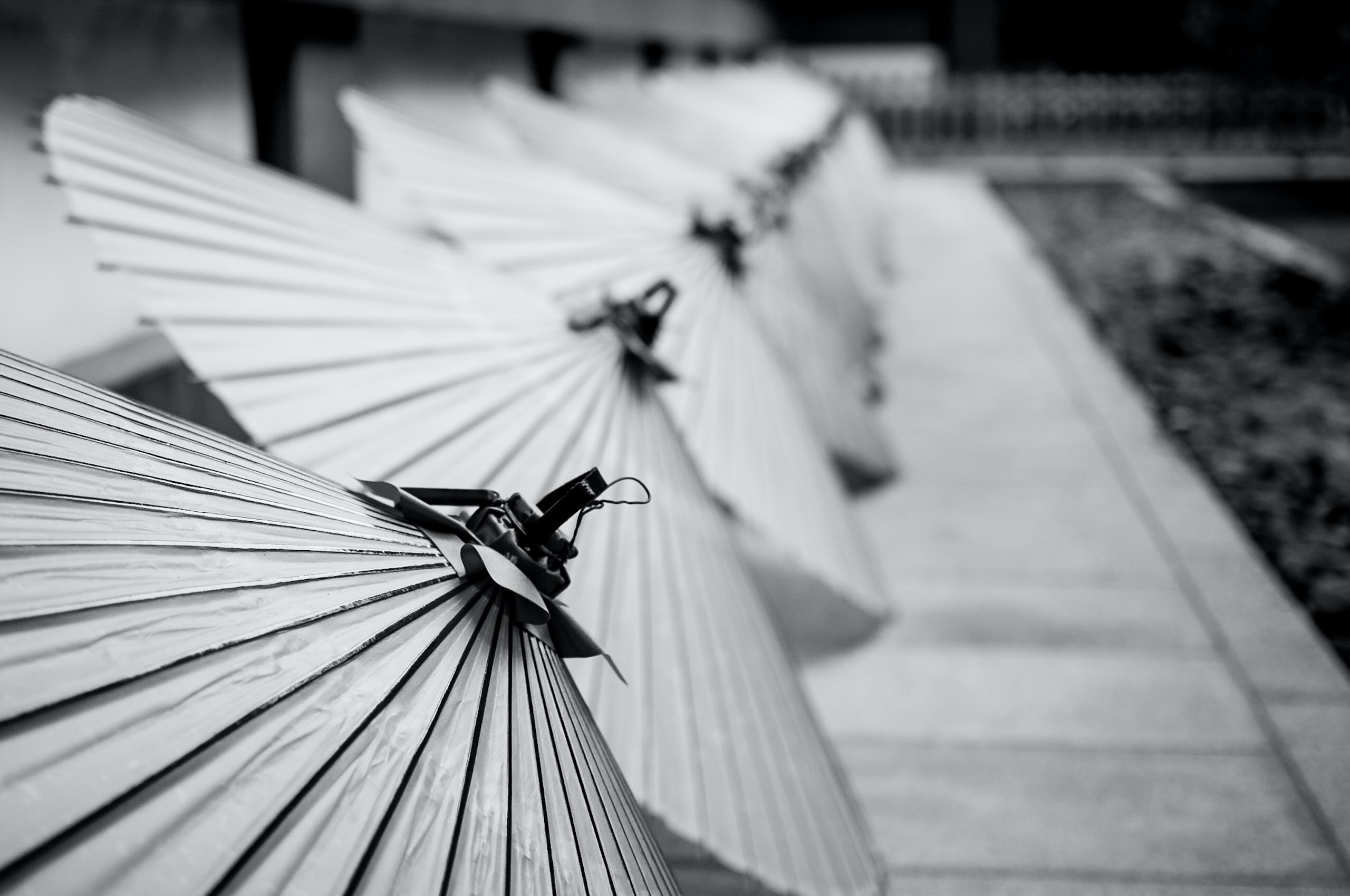 grayscale photography of opened Japanese umbrellas