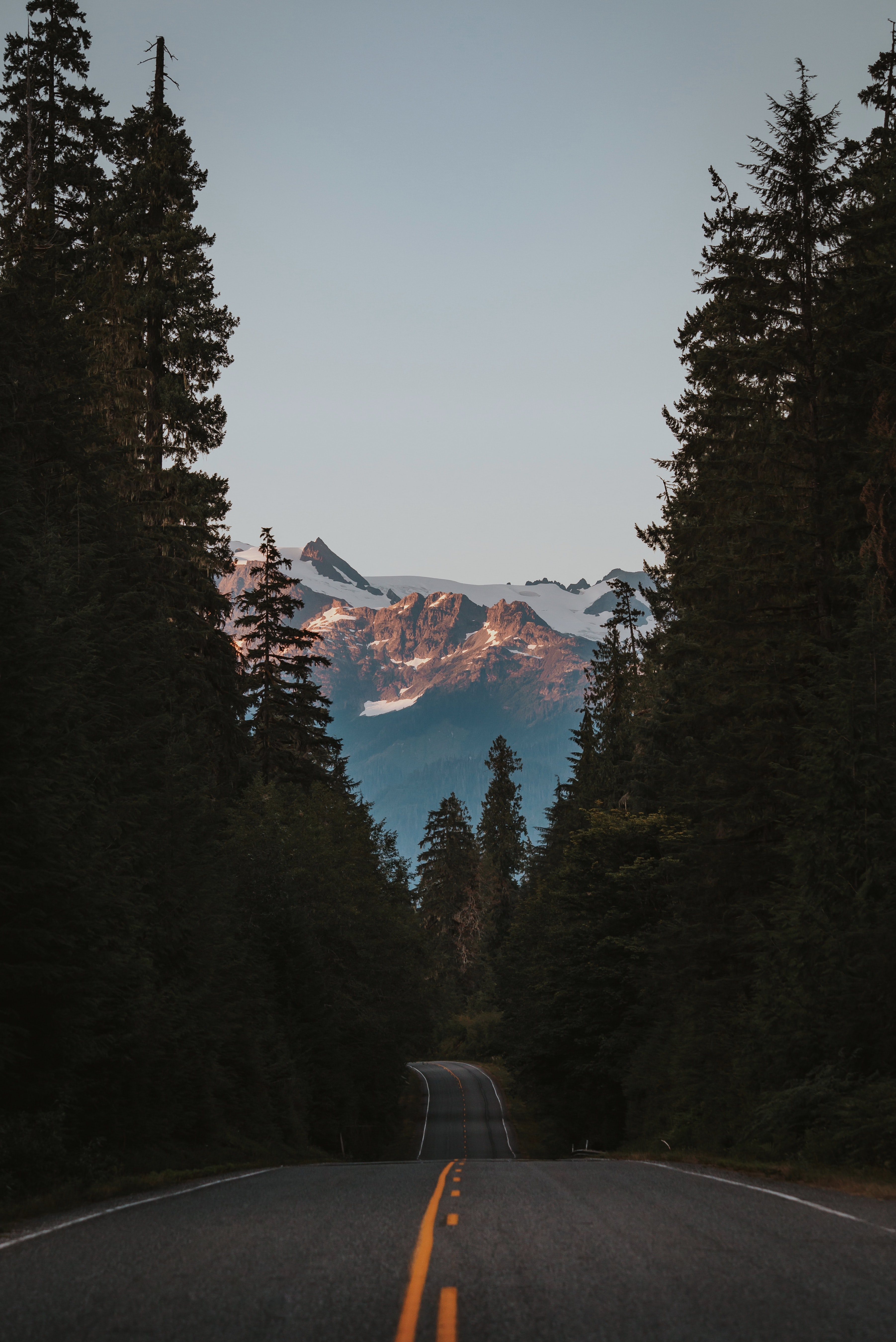 landscape photography of mountains, trees, and road
